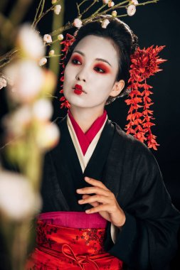 Selective focus of beautiful geisha in black kimono with red flowers in hair among sakura branches isolated on black stock vector