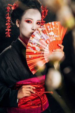selective focus of beautiful geisha in black kimono with flowers in hair holding hand fan and sakura branches isolated on black