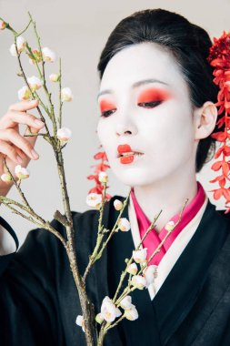 Tree branches and beautiful geisha with red and white makeup isolated on white stock vector