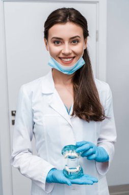 cheerful dentist in medical mask holding teeth model and smiling in clinic