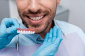 abgeschnittene Ansicht der Frau hält Zahnmodell in der Nähe von fröhlichen Mann