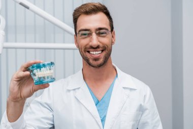 cheerful bearded dentist in glasses holding tooth model in dental clinic
