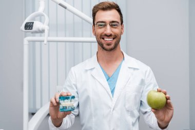 cheerful dentist in glasses holding tooth model and green apple in clinic