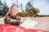 koncentrált vezető turisztikai állandó közelében piros autót, és néztem a térképet a napsütéses nap