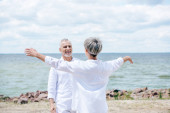 Fotografie back view of senior woman embracing smiling husband at beach
