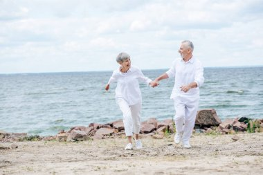 Full length view of happy senior couple holding hands and looking at each other while running at beach stock vector