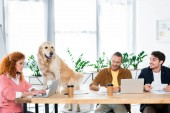 three friends smiling and doing paperwork,  golden retriever sitting on table in office