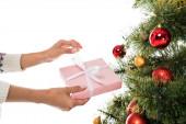 oříznutý pohled na ženu drží růžový dárek v blízkosti vánoční strom izolované na bílém