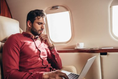 Handsome man in shirt using laptop in private plane stock vector