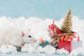 krysy a proutěné sáně s vánoční stromeček a dárkové krabice v Novém roce