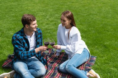 Cheerful couple clinking glasses with red wine while sitting on plaid blanket stock vector