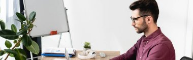 panoramic orientation of serious young businessman sitting at workplace near flipchart and green plant