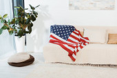 American flag on couch in living room