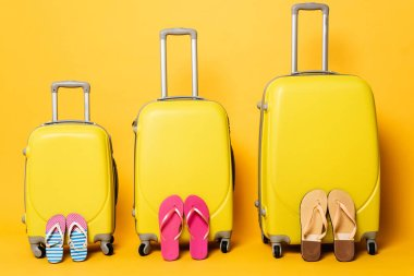 Travel bags with family flip flops on yellow stock vector