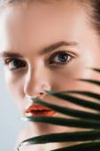 selektivní zaměření atraktivní ženy s make-up při pohledu do kamery v blízkosti palmového listu