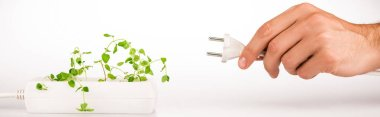 Cropped view of man holding power plug near green plant growing in socket in power extender on white background, panoramic shot stock vector