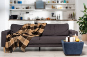 geräumige Küche mit modernen Möbeln, karierte Decke auf grauem Sofa, Medikamente und frische Zitronen auf dem Nachttisch