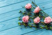blauer Holzgrund mit blühenden Zweigen und Rosen