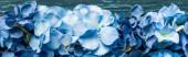 vrchní pohled na dřevěné zelené pozadí s modrými květy, panoramatický záběr