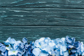 top view of wooden green background with blue floral border