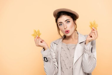 Amazed woman in trendy autumn outfit holding yellow leaves isolated on peach stock vector