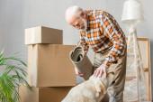 glücklicher Senior mit Teppich und Streichelhund mit Pappschachteln im Hintergrund