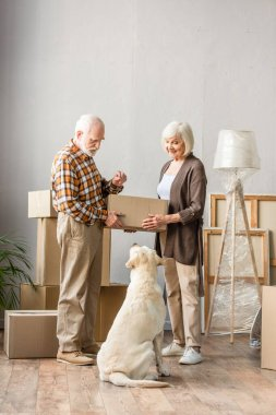 Full length view of senior couple holding cardboard box and looking at dog, moving concept stock vector