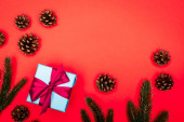 top view of cones, spruce branches and gift box on red background