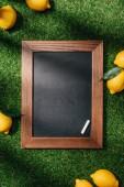 Fotografie Draufsicht der leere Tafel und Zitronen mit Blätter auf grünen Rasen