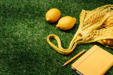close up view of lemons, net and textbook with pencil on green lawn