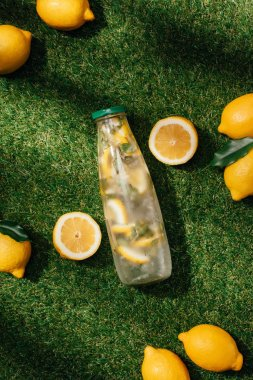 elevated view of bottle of lemonade and lemons on green lawn