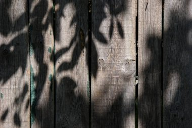 full frame image of wooden fence with shadow of leaves background