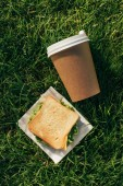 top view of disposable cup of coffee and sandwich on napkin on green grass