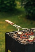 Fotografie preparing of delicious mushrooms and bell pepper at picnic