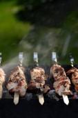 Fotografie Vepřový kebab na jehle s párou na grilu
