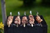Vepřový kebab (šašlik) na špízy na grilování v parku