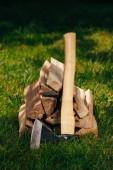 Fotografia mucchio di legna da ardere e ascia su erba verde nel parco