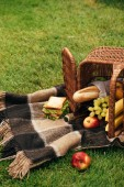 Photo flipped over basket with fruits and champagne on blanket on green grass