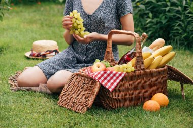 cropped image of woman holding grapes and sitting on green grass at picnic