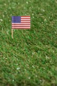 Fotografie close up view of american flagpole on green grass