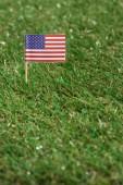 Fotografie zblízka pohled americké stožár na zelené trávě