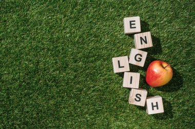 top view of fresh apple and english inscription made of wooden blocks on green grass
