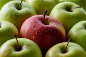 telaio completo di acqua gocce sul fondo di mele verdi e rosse