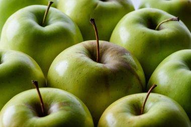 Full frame of ripe green apples background stock vector
