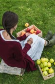 Photo rear view of girl writing in notepad and sitting in garden with wooden boxes of apples