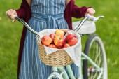 Fotografie oříznutý pohled dívka s proutěný koš plný jablek na kole