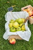 Fotografie green fresh picked apples in boxes with tag for sale on grass