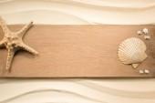 plochý ležela s uspořádání sea star a mušle na dřevěné prkno na písku