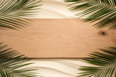 top view of palm leaves and wooden plank on sandy surface