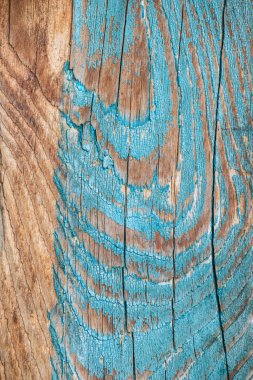 close-up view of aged wooden background with weathered blue paint
